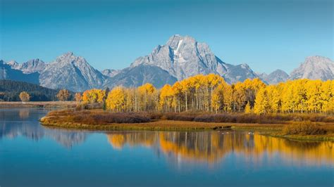 High Resolution Fall Foliage Pictures Grand Teton National Park In Autumn Wyoming Usa Windows 10 Spotlight Images
