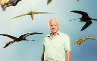David Attenborough's Conquest of the Skies 3D | OnTheBox