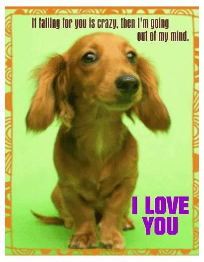 Crazy Ecard Send Someone Card Happy Paww