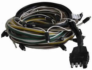 Triton Complete Wiring Harness  Xt Series  Lt10