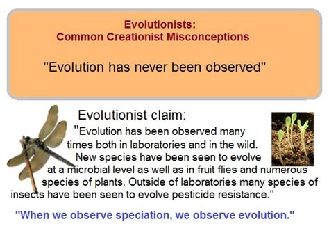 Evolution Memes - quot evolution has never been observed quot