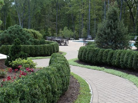 formality garden design landscaping pictures front yard landscaping ideas hedges