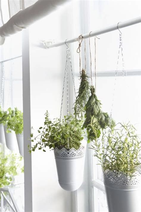 Window Potted Plants by Hanging Ikea Planters Kitchen Herbs To Hang Right Of