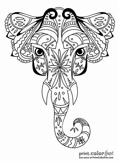 Elephant Ornamental Coloring Printable Related Printcolorfun