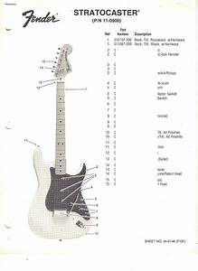 Wiring Diagram  Fender Com