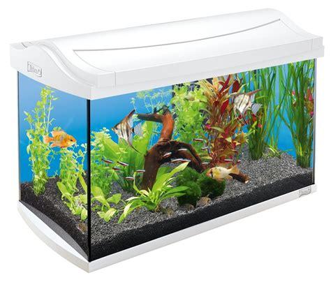 aquarium photos