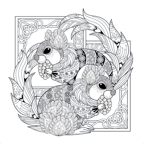 lovely squirrels squirrels rodents adult coloring pages