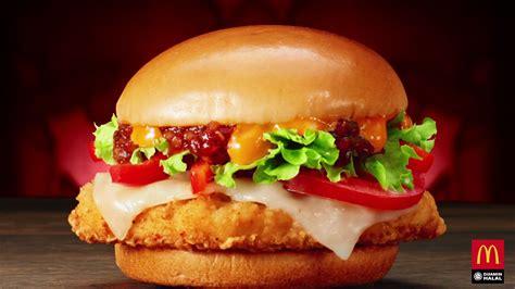 discover mexico   mexicana chicken burger