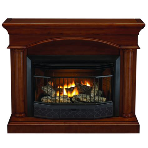 Gas L Mantles Home Depot by Compact Vent Free Gas Fireplace With Mantel Fireplaces