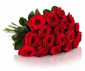 Pflanzkübel Für Rosen : 43 rote rosen xxl f r 26 blumenarrangement 50cm stiel ~ A.2002-acura-tl-radio.info Haus und Dekorationen