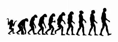 Monkey Dilemma Coding Into Monkeys Turning Code