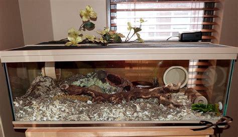 hamster habitat home cage beautiful rustic aquarium hamster home hamster home and cage ideas