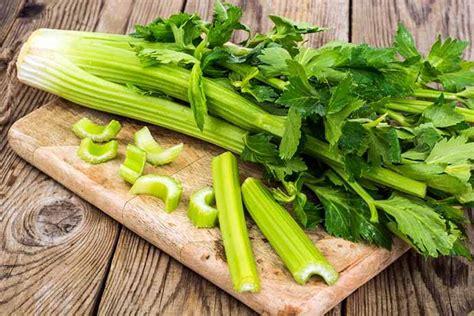 Proprieta Sedano Sedano Propriet 224 Calorie Usi E Ricette Greenme