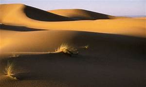 Planets in the Movie Dune (page 3) - Pics about space