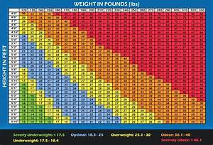 Strength Fighter Bodybuilding Charts