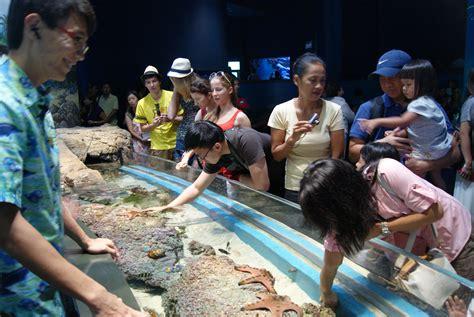 file discovery touch pool s e a aquarium marine