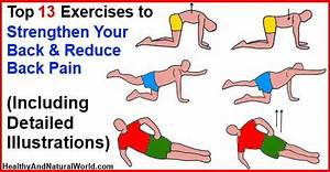 Top 13 Exercises To Strengthen Your Back And Reduce Back