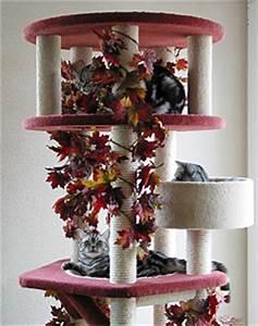 Katzen Fernhalten Von Möbeln : kratzbaum britisch kurzhaar silber tabby del ~ Michelbontemps.com Haus und Dekorationen