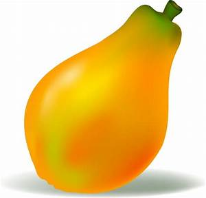 Papaya vector free vector download (24 Free vector) for ...