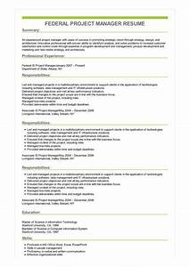 Career Summary Examples Sample Federal Project Manager Resume