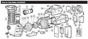 32 Hayward Pump Parts Diagram