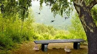 Free Nature Desktop Ba...