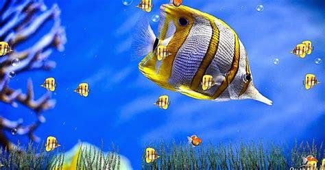 Dreamscene Seven Animated Wallpapers - windows 7 animated screensavers wallpaper best free hd