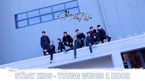 stray kids young wings  hour youtube