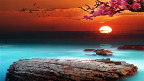 sky bright sunset desktop background  wallpaperscom
