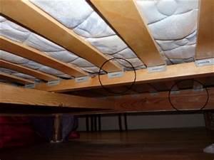 Produit Punaise De Lit : photos de punaises de lit ~ Melissatoandfro.com Idées de Décoration