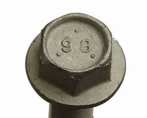 Gm Bolts Pack Of 5 M10 X 1 5 X 40 New Oem 11516350