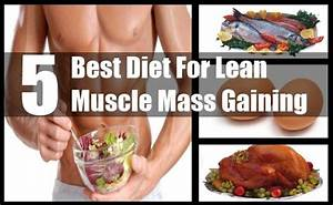 5 Best Diet For Lean Muscle Mass Gaining - Diets For Lean ...