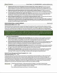 c level executive resume example distinctive documents With c level resume writers