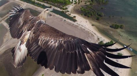 Amazing Aerial Photos Taken from Drones