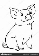 Coloring Pig Piglet Lion Toy Peppa Dog Minecraft Train Pigs Elephant Scenery Animal Realistic sketch template