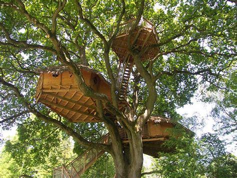 chambres d hotes à la ferme cabanes dans les arbres en normandie la grande no