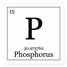 Where does phosphorus fertilizer come from? » Hort Americas