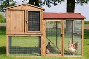 Hühnerstall Für 20 Hühner Kaufen : wie hoch muss die au enwand das gitter f r den auslauf ~ Michelbontemps.com Haus und Dekorationen