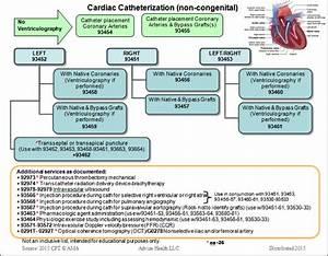 Coding For Cardiac Catheterization