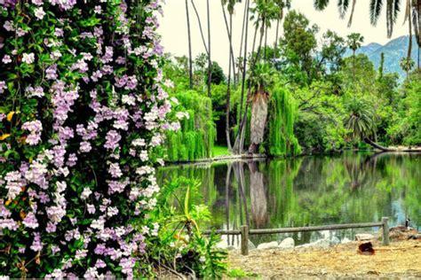 los angeles botanical gardens los angeles county arboretum botanical garden 301 n