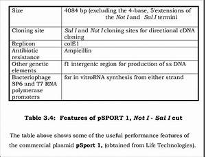 6 Shows The Map Of Plasmid Psport 1  Which Has A Size Of