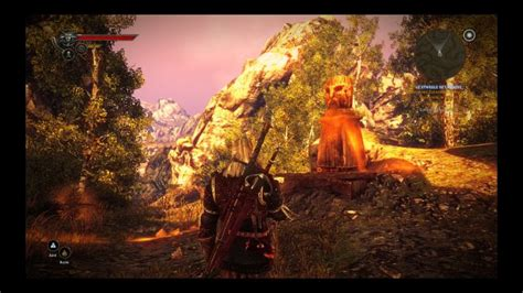 test the witcher 2 assassins of pc