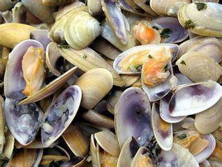 huitres moules  autres fruits de mer