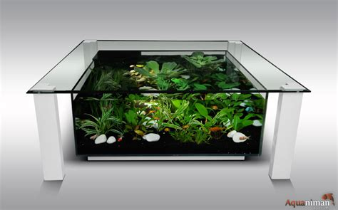 nettoyer decor aquarium 28 images nettoyer aquarium efficacement c 195 180 t 195 169 maison