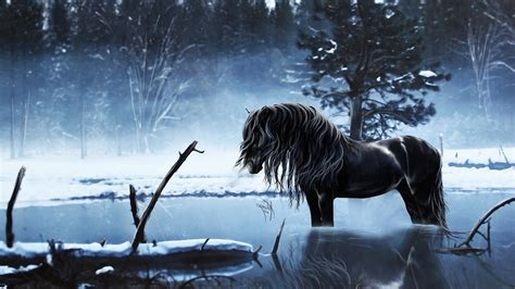Winter Horses Pictures Wallpaper (53+ Images