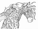 Coloring Horse Adults Pages Printables sketch template