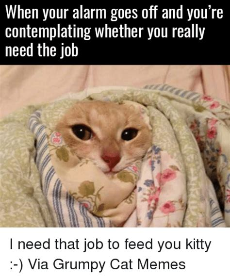 Make Your Own Grumpy Cat Meme - make your own grumpy cat meme your best of the best memes