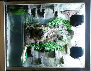 Tiere Für Aquarium : tieranzeigen paludarium kleinanzeigen ~ Lizthompson.info Haus und Dekorationen