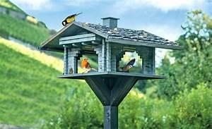 Vogelhaus Bauen Mit Kindern Anleitung : vogelhauschen selber bauen vogelhaus bauanleitung anleitung kostenlos bausatz vogelfutterhaus ~ Watch28wear.com Haus und Dekorationen