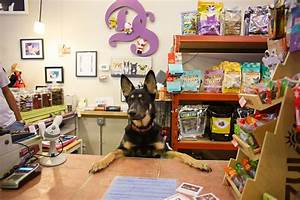 Fido Pet Shop : pet stores in chicago for dog leashes cat collars and more ~ Markanthonyermac.com Haus und Dekorationen